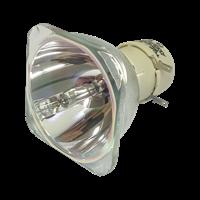 BENQ 5J.JEC05.001 Lámpara sin carcasa