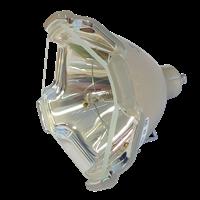 EIKI LC-X6L Lámpara sin carcasa