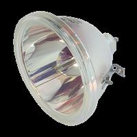 EIKI LC-X983A Lámpara sin carcasa