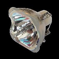 EIKI LC-XB100 Lámpara sin carcasa