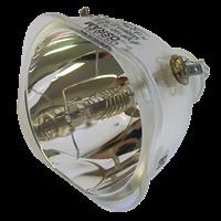 LENOVO M500 Lámpara sin carcasa