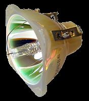 LENOVO TD320 Lámpara sin carcasa