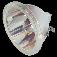 LG RU-44SZ51RD Lámpara sin carcasa
