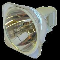OPTOMA EW677 Lámpara sin carcasa