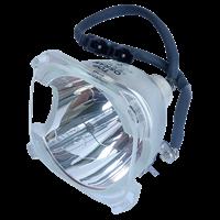 OSRAM P-VIP 100-120/1.0 E22h Lámpara sin carcasa